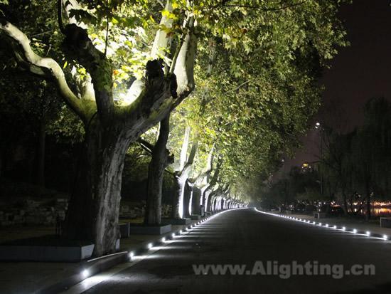 张昕认为,植物主题景观照明设计应该帮助人们界定其在时空中的位置