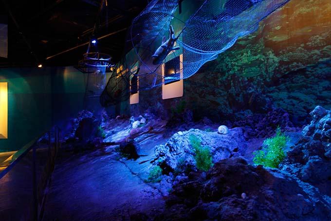 2013锦州世界园林博览会海洋馆灯光设计-北京光影良品
