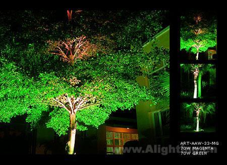 2 夜景中的绿化景观照明呈现