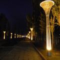 新疆拜城喀普斯朗河照明详解—2014神灯奖项目申报