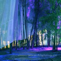 新加坡梦幻花园展园灯光设计