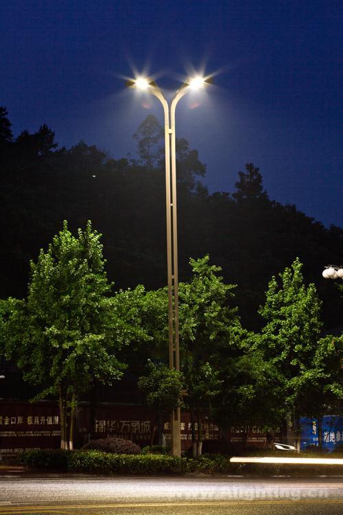 四川泸州龙马大道道路照明设计银杏叶景观灯设计