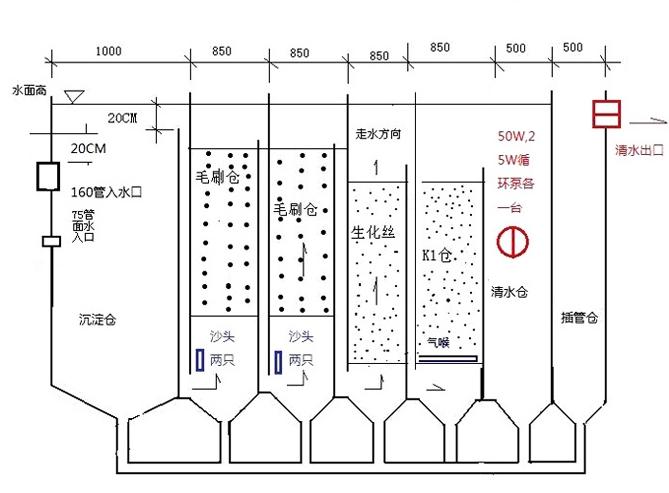 新型的锦鲤鱼池过滤系统设计图-szpool