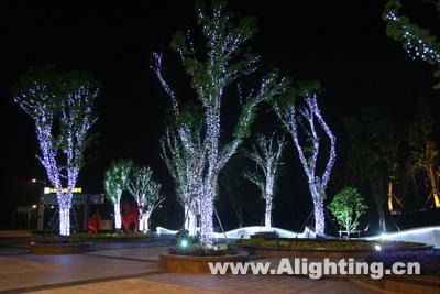 树杆夜景灯光效果