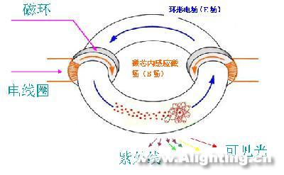 2015年中国和全球能源结构图